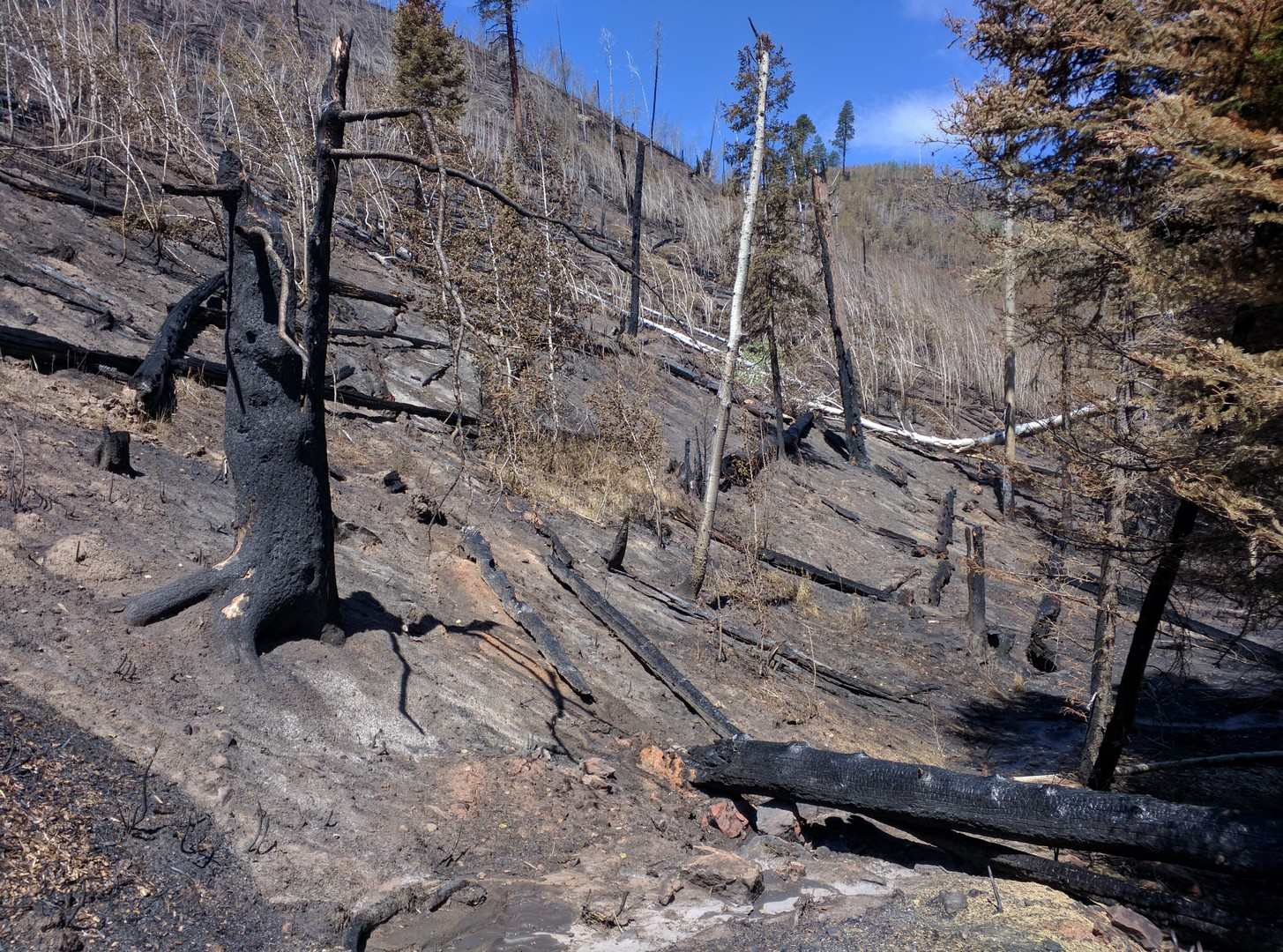 Fire Damage